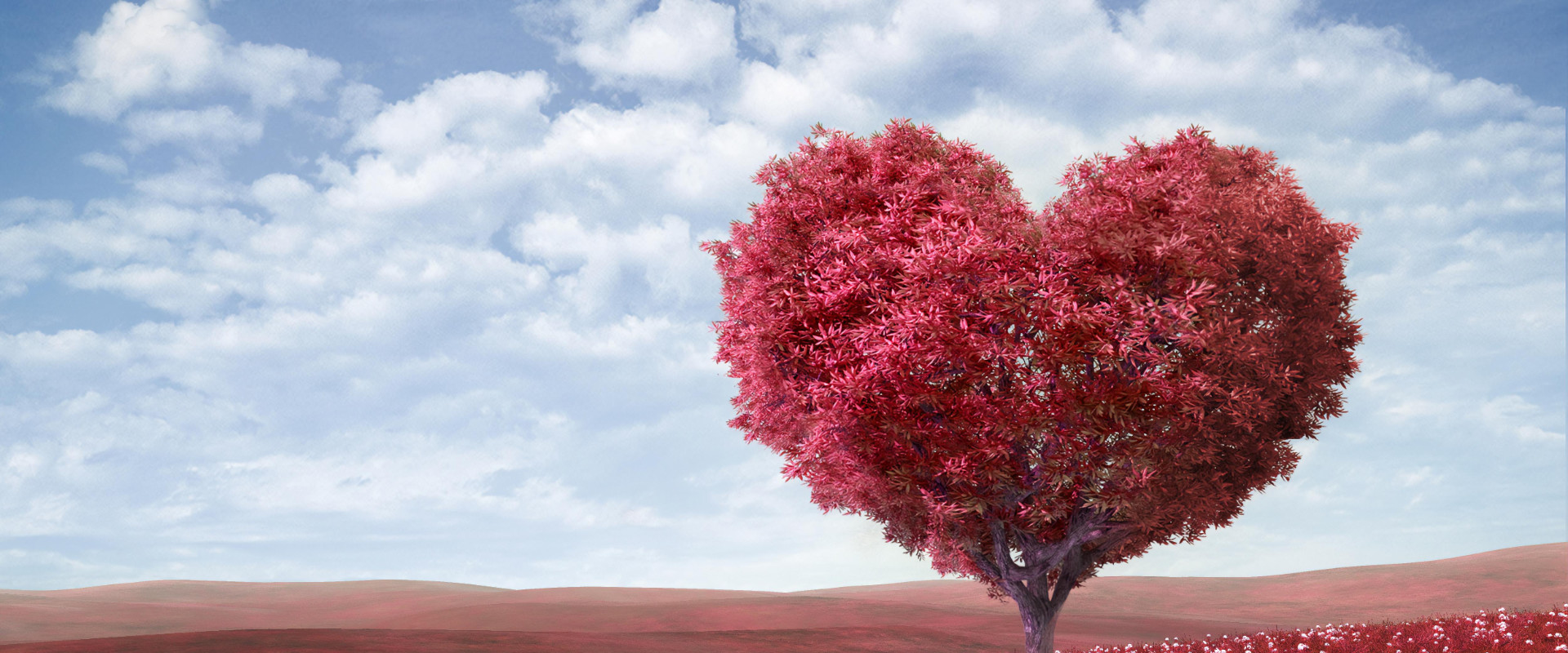 Neighbourhood Watch London - Fenruary Newsletter Header - Heart Shaped Tree